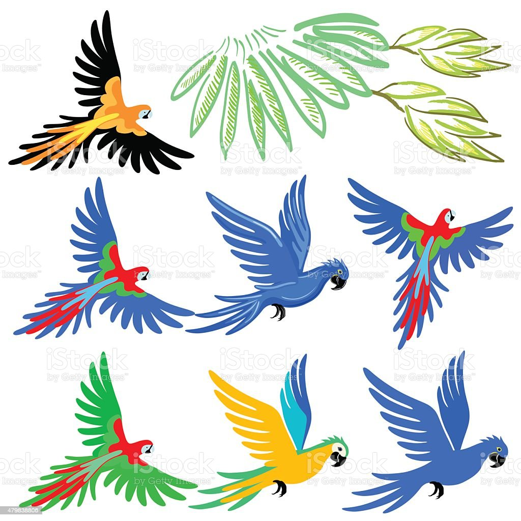 Macaw parrot pattern set royalty-free macaw parrot pattern set stock illustration - download image now