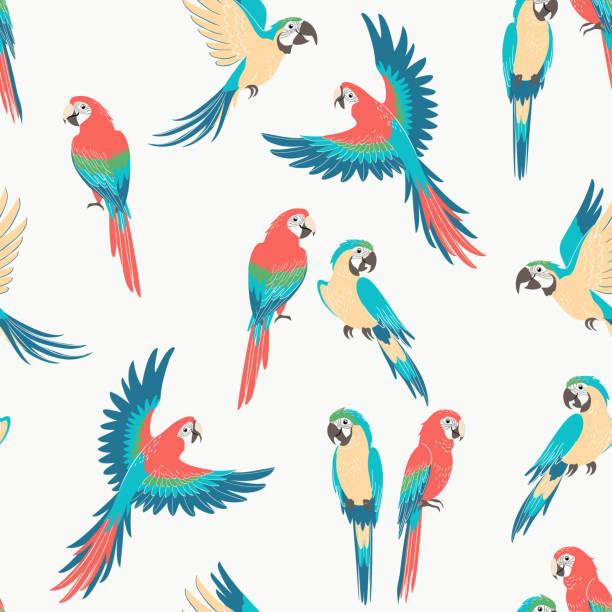 ilustrações de stock, clip art, desenhos animados e ícones de macaw parrot pattern - arara
