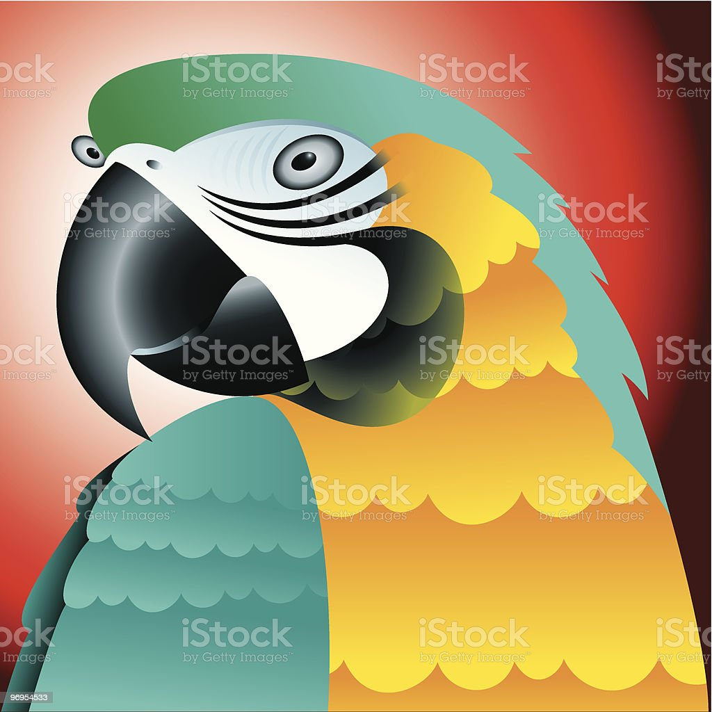 Macaw portrait royalty-free macaw portrait stock vector art & more images of anthropomorphic face