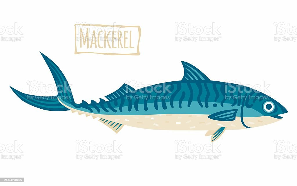 Mackerel vector art illustration