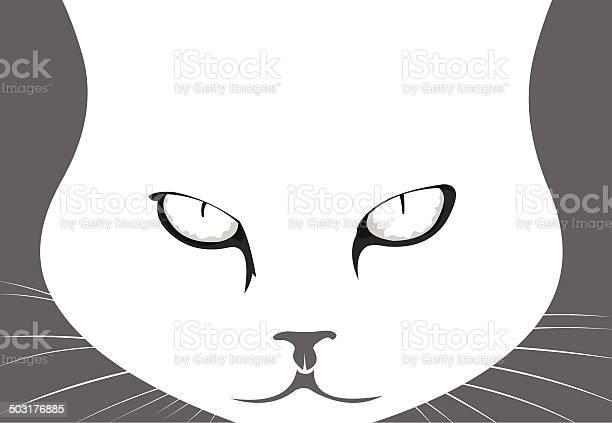 Mad cat portrait vector illustration vector id503176885?b=1&k=6&m=503176885&s=612x612&h=so1q7i yf8ldrjjlo48dforr ah8tcevqy1xpzmcxw0=