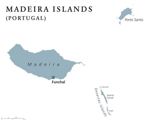 ilustrações de stock, clip art, desenhos animados e ícones de madeira islands political map - funchal madeira