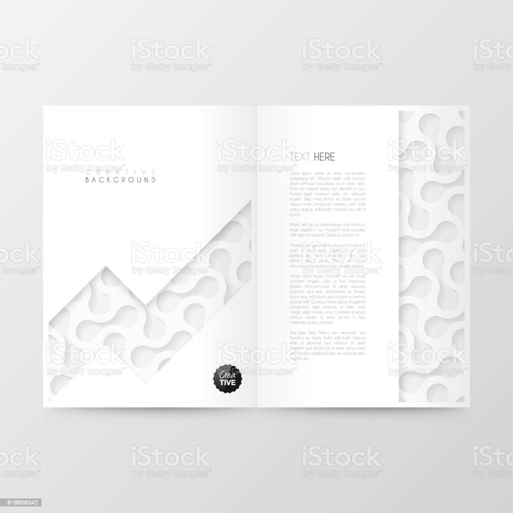 Disposition De Modele Magazine Brochure Design De La Couverture