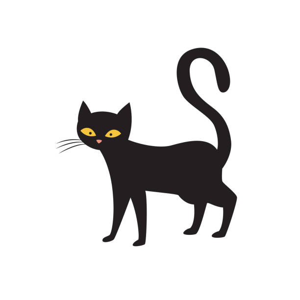 Magic black cat character standing alone, flat vector illustration isolated. Magic black cat cartoon character standing alone, flat vector illustration isolated on white background. Occult and astrology, symbol of bad luck and misfortune. black cat stock illustrations