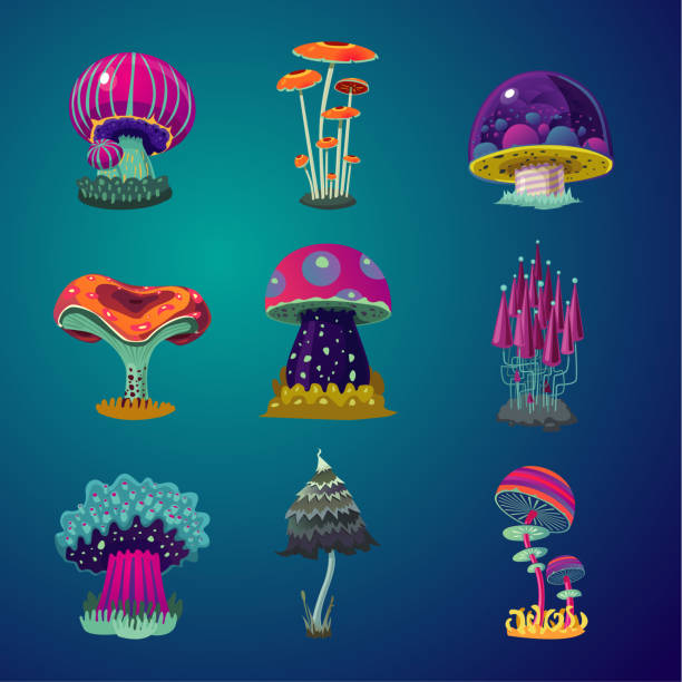 ilustrações de stock, clip art, desenhos animados e ícones de magic cartoon mushrooms icons set. fantasy object vector illustration. game design element collection. - cogumelos