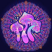 Magic mushrooms.  Psychedelic hallucination. Vibrant  vector illustration. 60s hippie colorful art.