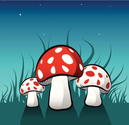 Magic Mushrooms [vector]
