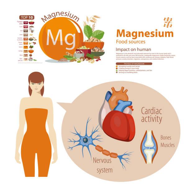stockillustraties, clipart, cartoons en iconen met magnesium - spoorelement