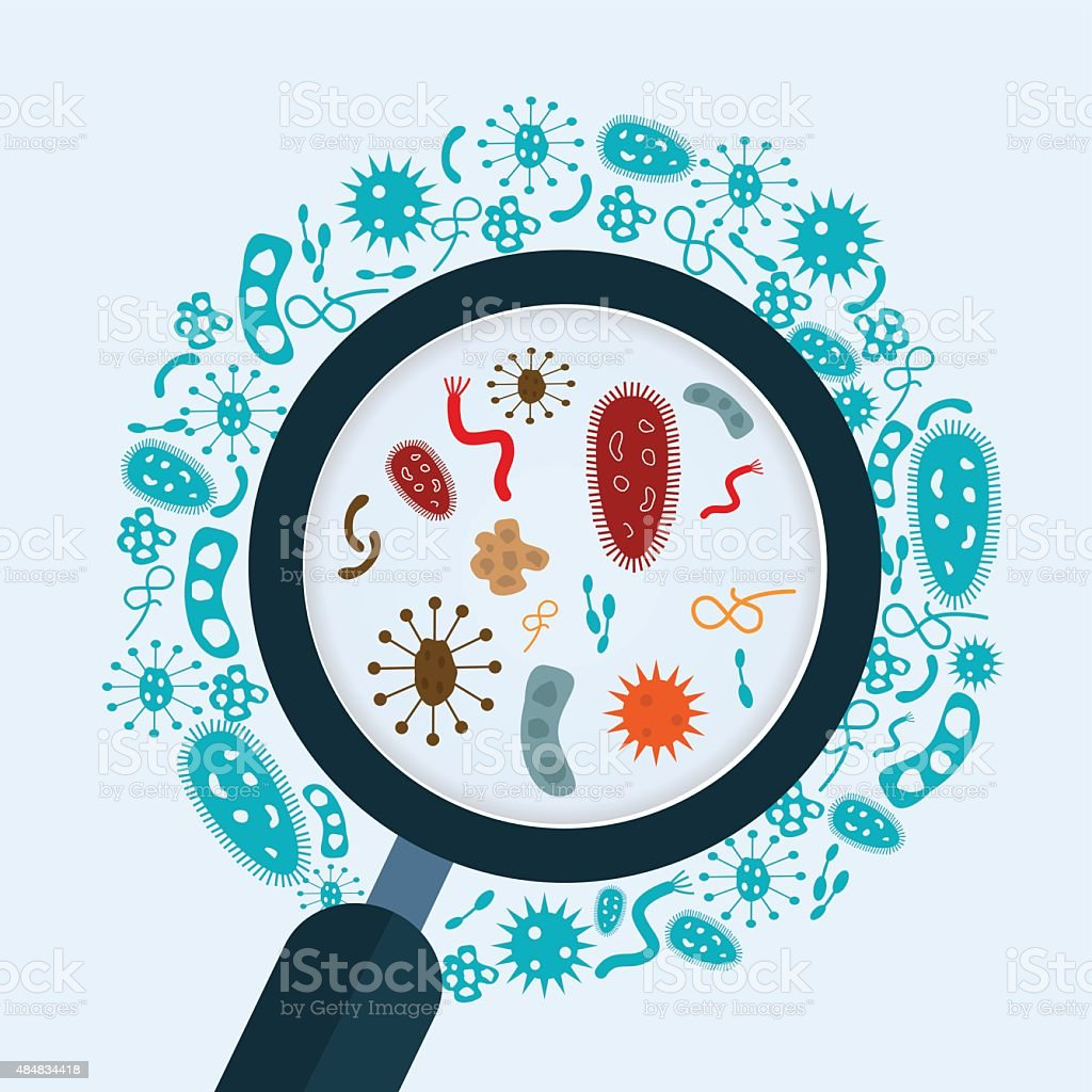 Magnifier glass  with bacteria, microbes and virus vector art illustration