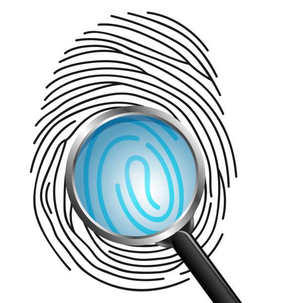magnifying glass on fingerprint isolated on white background - id盗難点のイラスト素材/クリップアート素材/マンガ素材/アイコン素材
