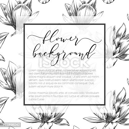 Magnolia flower design template on seamless pattern in watercolor magnolia flower design template on seamless pattern in watercolor and ink stock vector art more images of abstract 977898042 istock maxwellsz