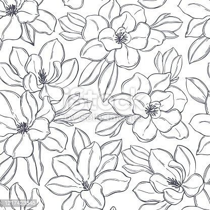Hand drawn magnolia flowers. Vector seamless pattern.