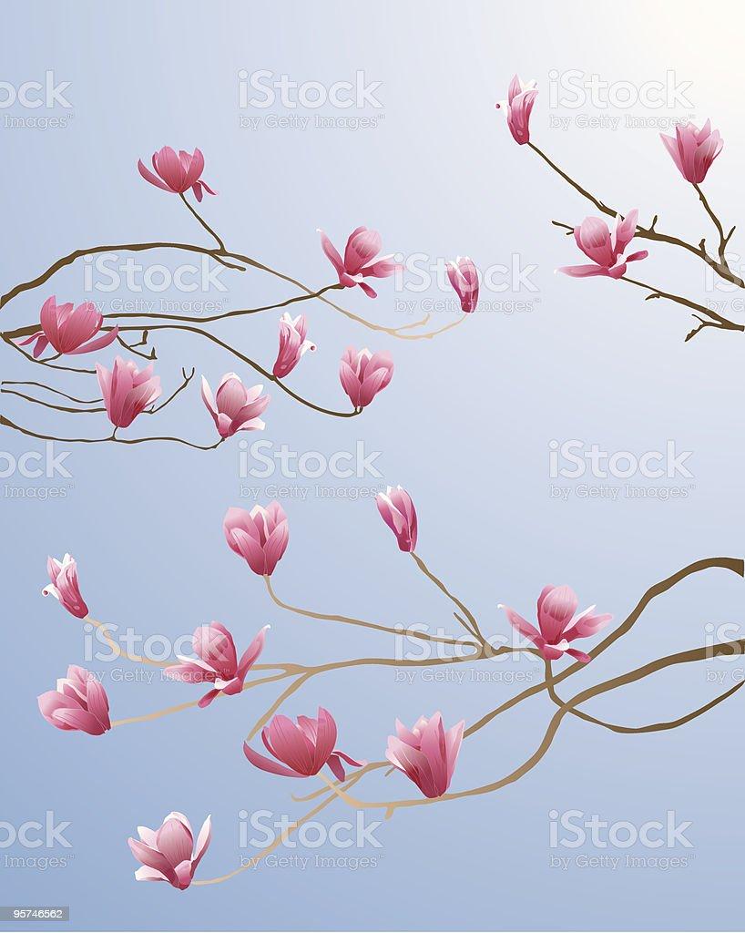 Magnolia Tree royalty-free stock vector art