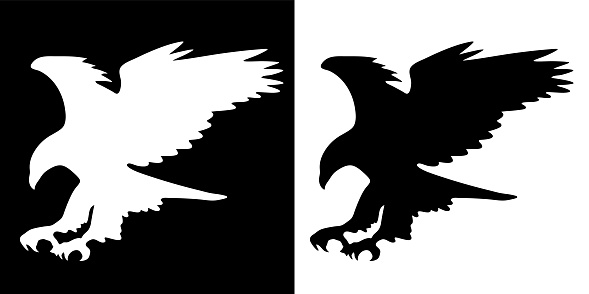 Majestic Eagle in Flight Silhouette, Wings Spread, Isolated Black and White Vector Illustration