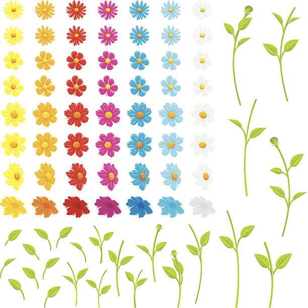 Make your own flowers Various separate flowers, leaves and stems to make your own flowers. plant stem stock illustrations