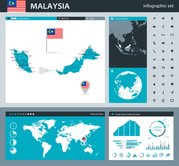 35 - malaysia - grau murena infografik q10 - kuching stock-grafiken, -clipart, -cartoons und -symbole