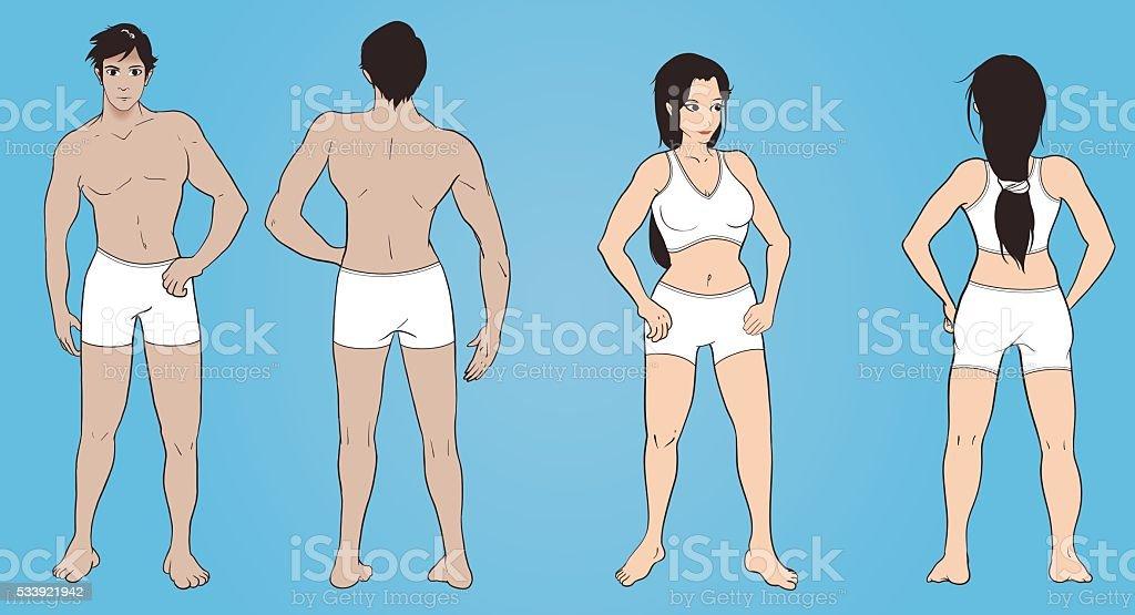 Male And Female Anatomy Stock Vektor Art Und Mehr Bilder Von