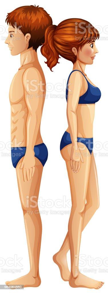 白い背景の上の男性と女性の身体 - お手洗いのロイヤリティフリーベクトルアート