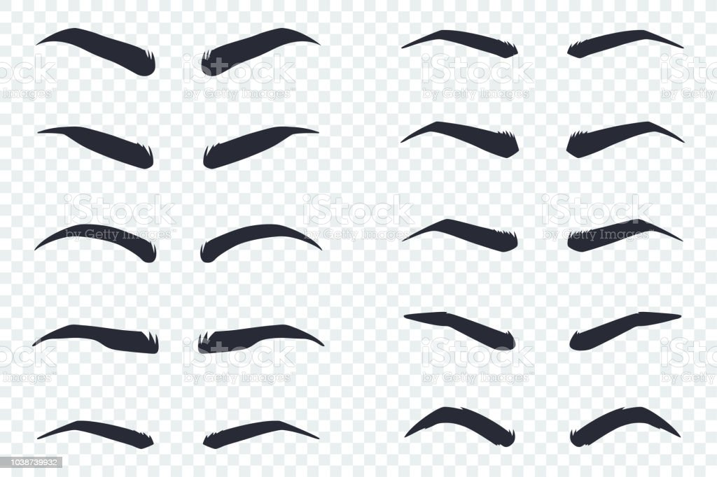 Male And Female Eyebrows Of Different Shapes Vector Cartoon Flat