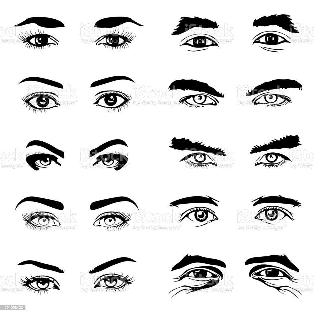 Male and female eyes eyebrows vector elements