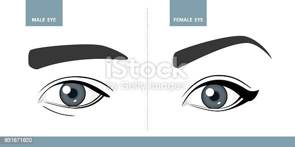 male and female eyes vector illustration template for makeup or