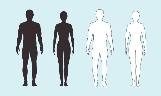 męska i żeńska sylwetka na niebieskim tle, wektor. - neutralne tło stock illustrations
