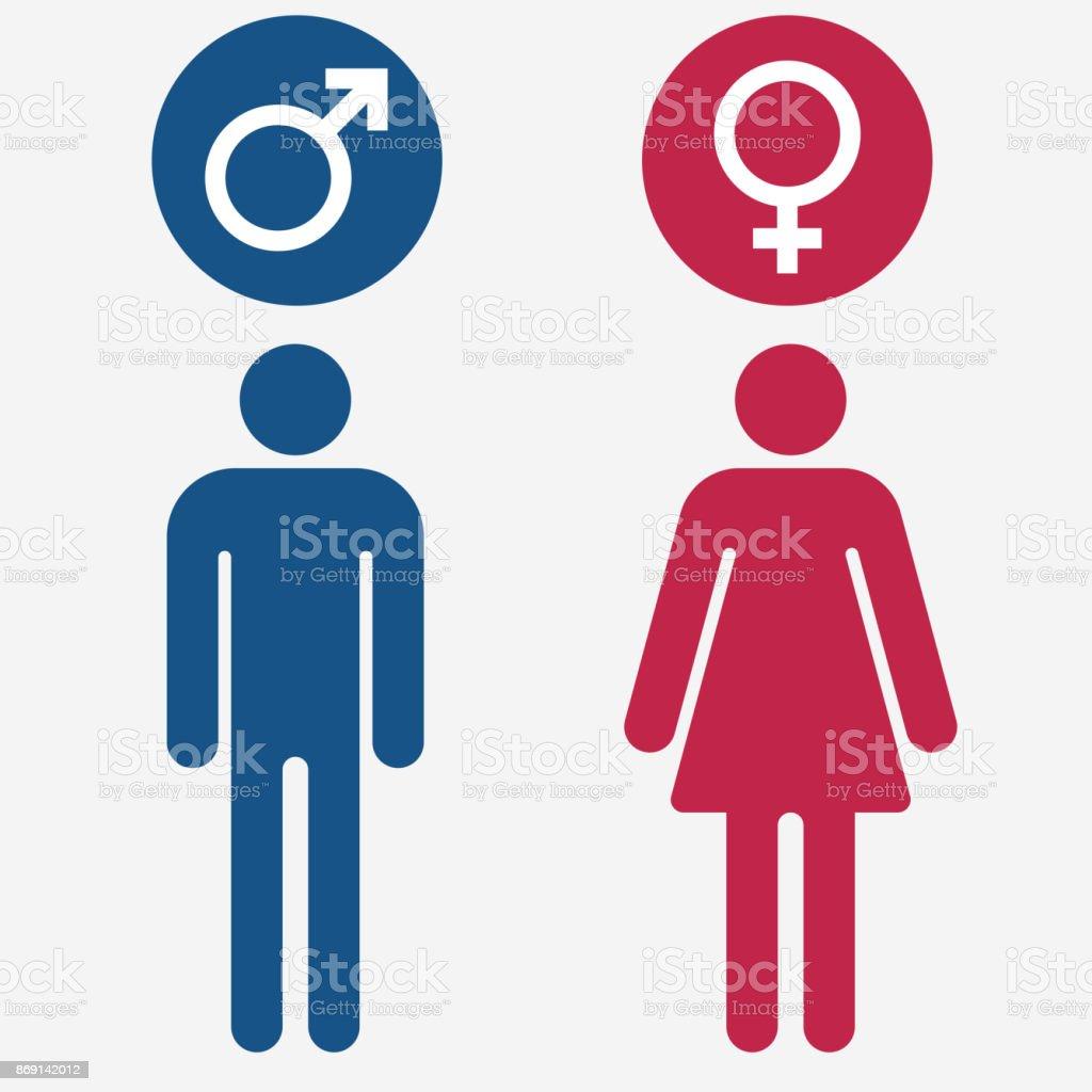 Männliche Und Weibliche Symbole Vektor Vektor Illustration 869142012 ...