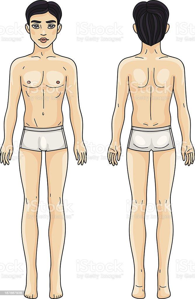 Männliche Körper Asiatischen Mann Vorne Und Hinten Stock Vektor Art ...