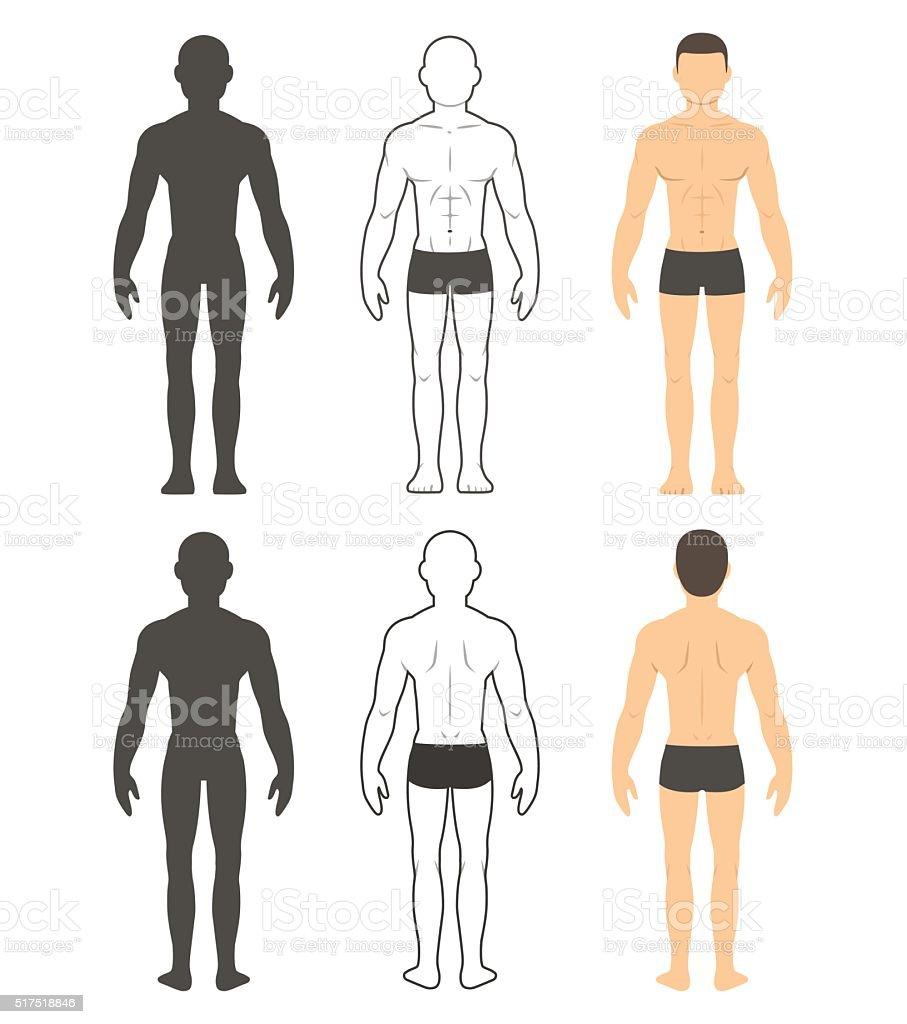 Male body illustration vector art illustration