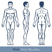 Male body silhouettes