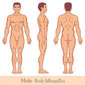 Male Body Silhouettes