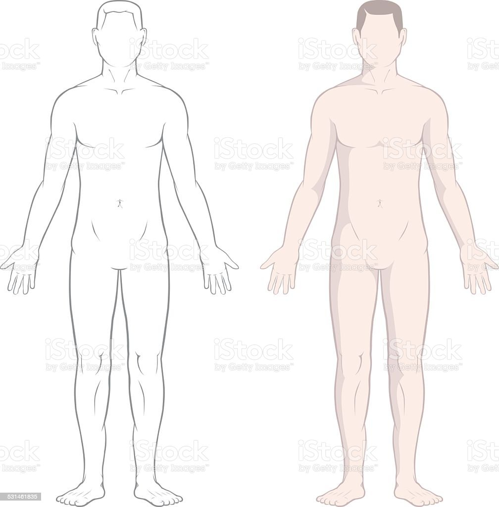 Male Body vector art illustration