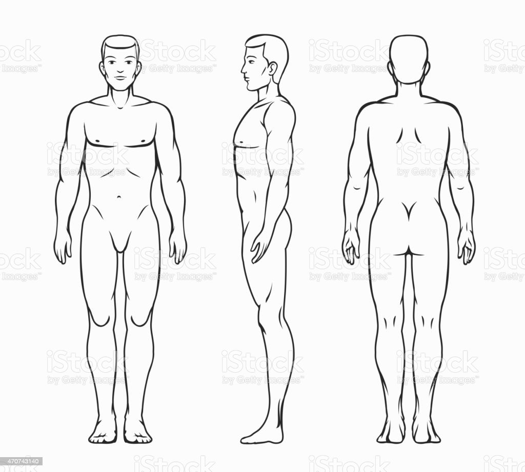 Male body vector illustration vector art illustration