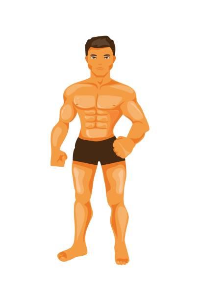 Male bodybuilder vector art illustration