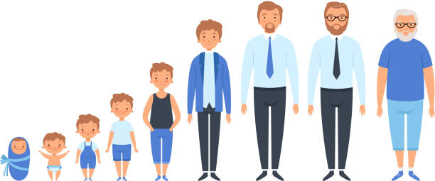 male different ages. newborn teenage boy man person old grandfather adult peoples vector clipart isolated - maluch stock illustrations