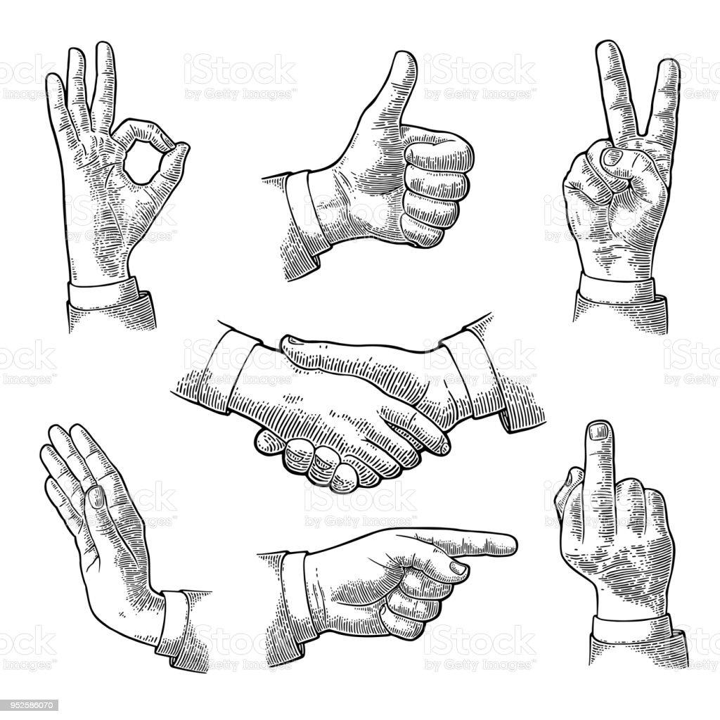 Mannelijke Hand teken. Zoals, handdruk, Ok, Stop, middelvinger, overwinning - Royalty-free Afgelegen vectorkunst