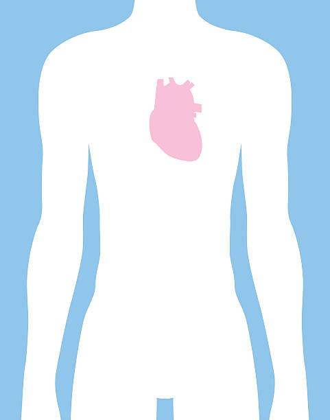 Male Heart Body Icon vector art illustration