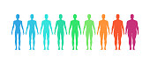 BMI concept. Male body mass index vector illustration. Body shapes from underweight to extremely obese
