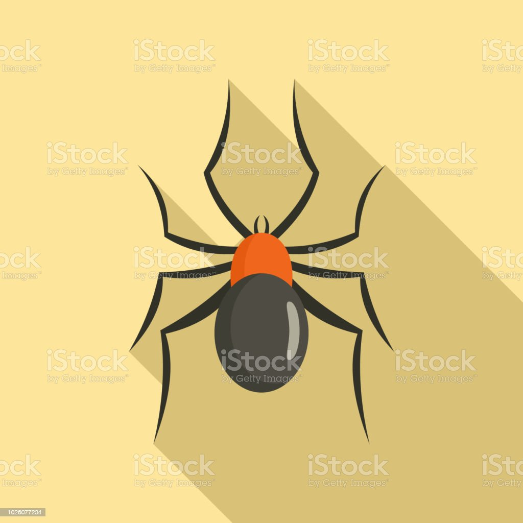 Male Mouse Spider Icon Flat Style Stock Vector Art & More Images of ...