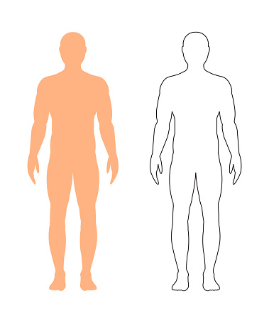 Male silhouette (contour) on white background, vector.