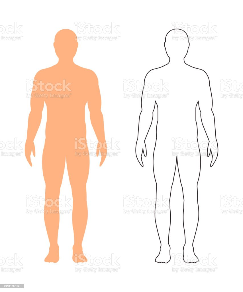 Male silhouette (contour) on white background, vector. vector art illustration