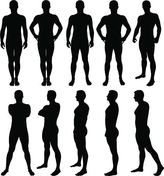 illustrazioni stock, clip art, cartoni animati e icone di tendenza di silhouette uomo posa - il corpo umano