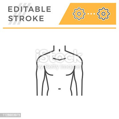 Male torso line icon isolated on white. Editable stroke. Vector illustration