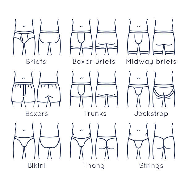Male underwear types flat line vector icons set Male underwear types flat line vector icons set. Modern man briefs fashion styles on torso figures. Front, back view. Underclothes linear infographic design elements. Isolated clothes pictogram. Classic briefs, boxer briefs, boxers, trunks, jockstrap, bikini, strings, thong. Isolated on white g string bikini models stock illustrations