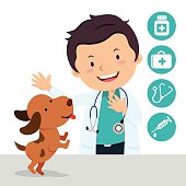 Vector illustration of a veterinarian with a cute puppy and medical icons.