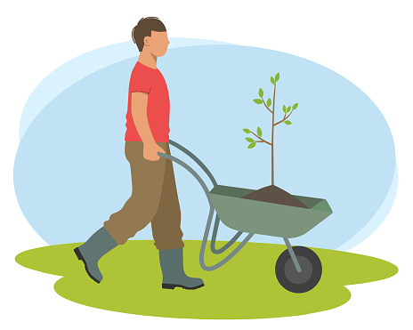 Male worker pushes a cart with a seedling for planting in the garden.