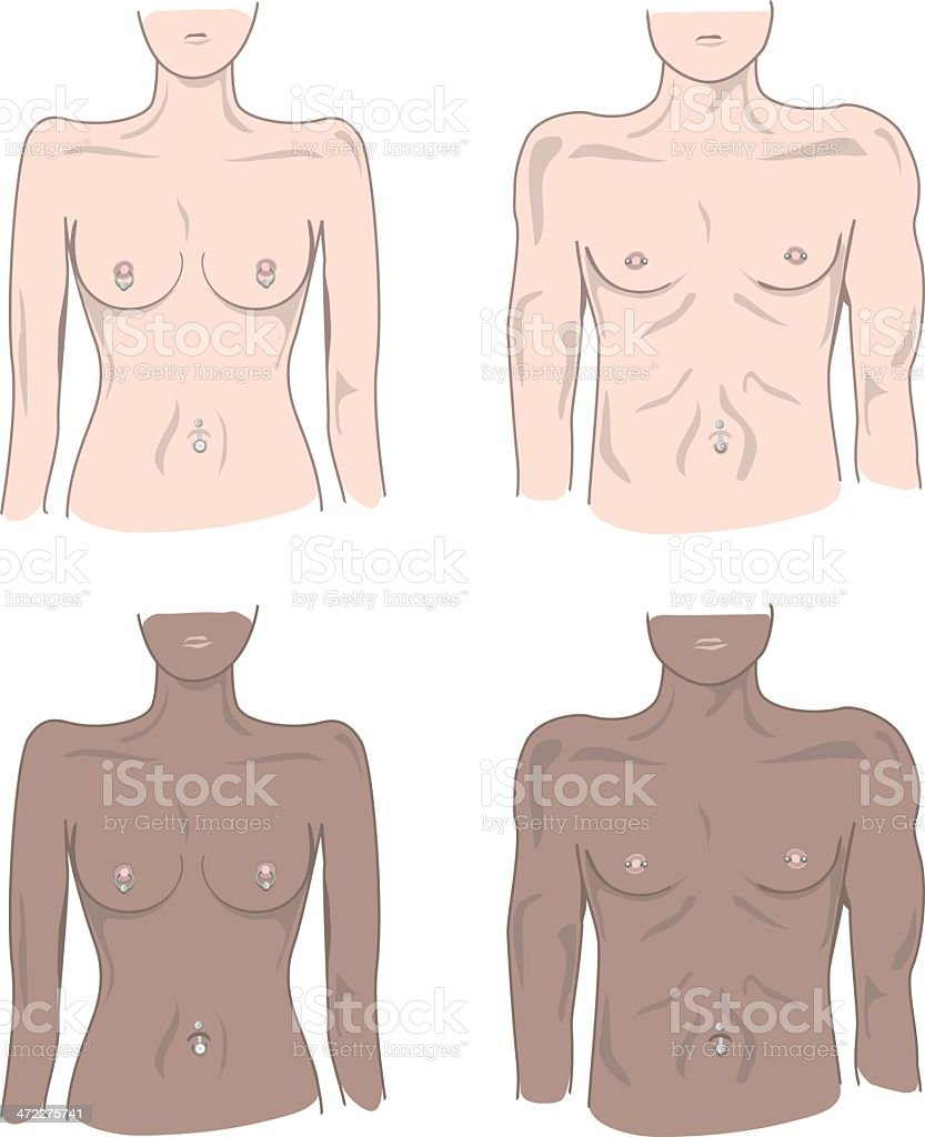 Malefemale Nipple And Navel Piercings Stock Vector Art & More Images ...