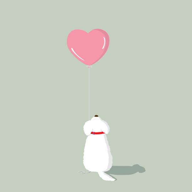 malteser welpen mit rosa herz-form-helium-ballon - schoßhunde stock-grafiken, -clipart, -cartoons und -symbole