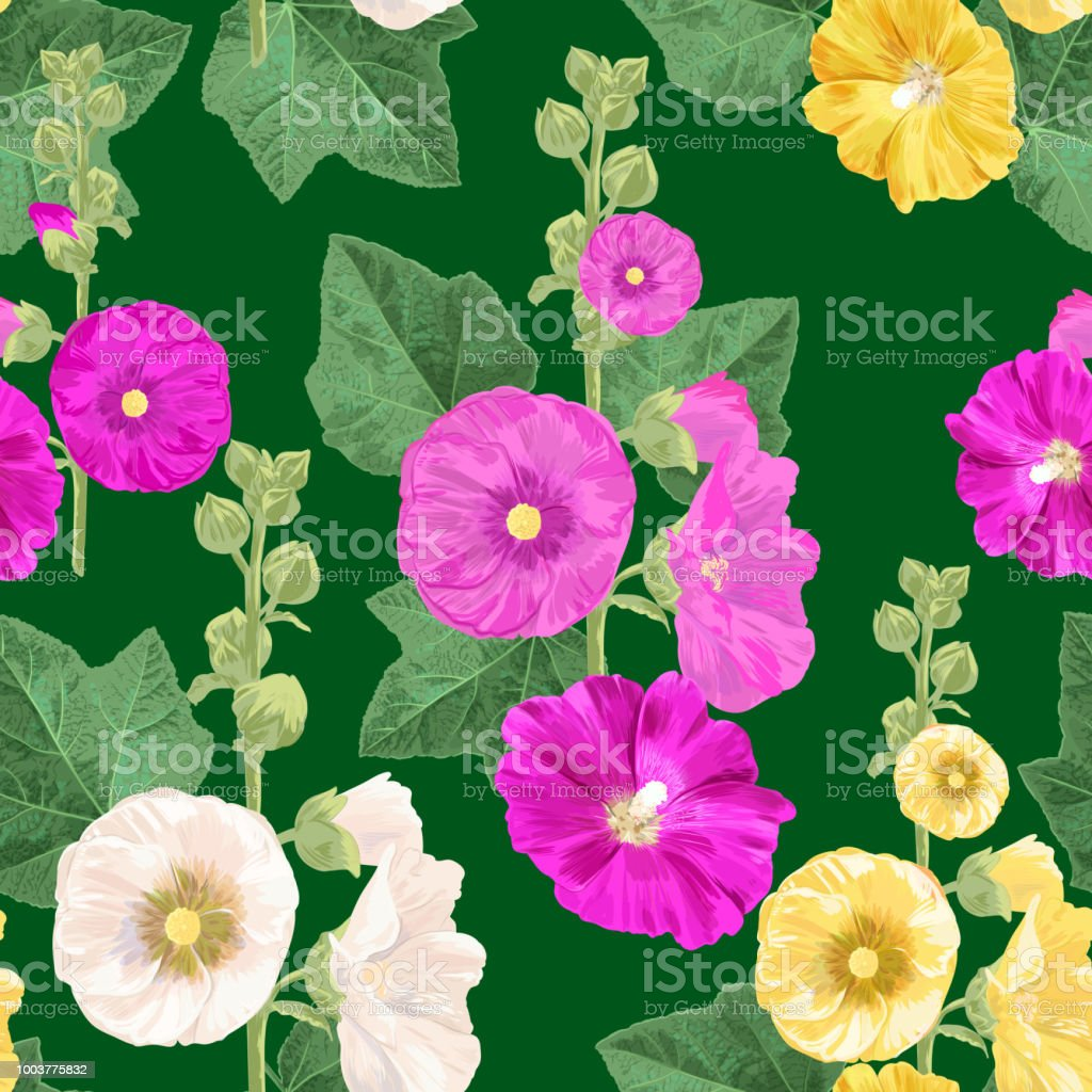 Malva Flower Seamless Pattern Summer Floral Background With