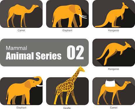Mammal animal cartoon collection, vector